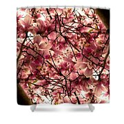 Blossoming Blossoms Shower Curtain