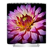 Blossoming Flower Shower Curtain