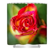Blossoming Life Shower Curtain