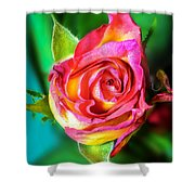 Blossoming Life....2 Shower Curtain