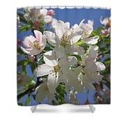 Blossoms On Blue Shower Curtain