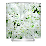 Blossoms Squared Shower Curtain