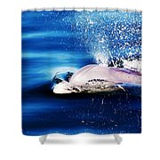 Blow Hole  Shower Curtain