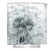 Blow Me Away Shower Curtain