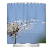Blowing Away Shower Curtain