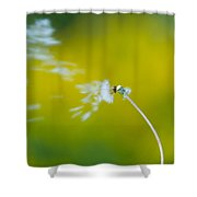Blown Away Shower Curtain