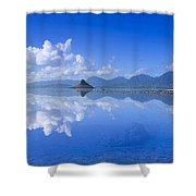 Blue Mokolii Shower Curtain