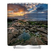 Blue And Gold Tidepools Shower Curtain