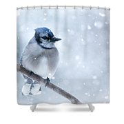 Blue And Snowy Shower Curtain