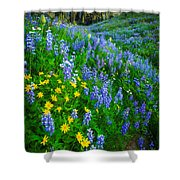 Blue And Yellow Hillside Shower Curtain