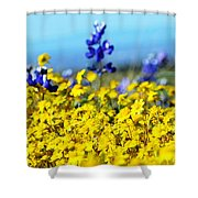 Blue And Yellow Wildflowers Shower Curtain