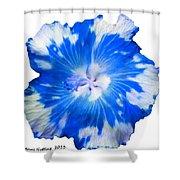 Blue Appaloosa Shower Curtain