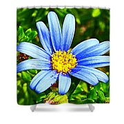 Blue Aster In Park Sierra Near Coarsegold-california   Shower Curtain