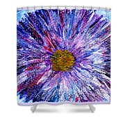 Blue Aster Miniature Painting Shower Curtain