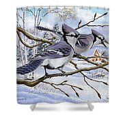 Blue Bandits Winter Afternoon Shower Curtain