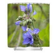 Blue Beauty Shower Curtain