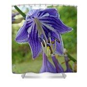 Blue Bell Flower Shower Curtain