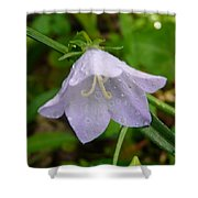 Blue Bell Flower Shower Curtain
