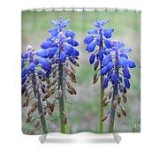 Blue Bells 2 Shower Curtain