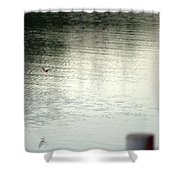 Blue Bird Over The Water...   # Shower Curtain