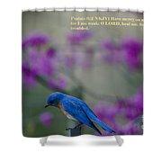 Blue Bird Praying Shower Curtain