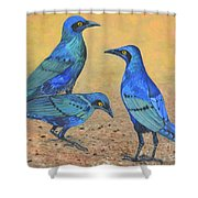 Blue Birds Of Happiness Shower Curtain