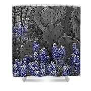 Blue Bonnet Cactus Shower Curtain