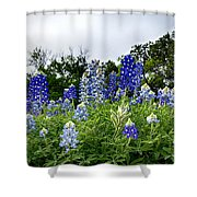 Blue Bonnet Carpet V9 Shower Curtain