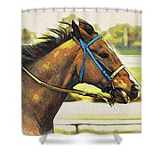 Blue Bridle Shower Curtain