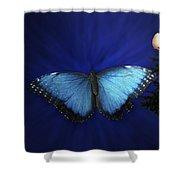 Blue Butterfly Ascending Shower Curtain