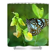 Blue Butterfly In The Green Garden Shower Curtain