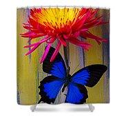 Blue Butterfly On Fire Mum Shower Curtain