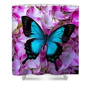 Blue Butterfly On Pink Hydrangea Shower Curtain