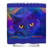Blue Cat Ponders Shower Curtain