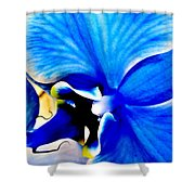 Blue Diamond Orchid Close Up Shower Curtain