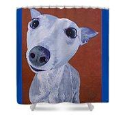 Blue Dog Shower Curtain