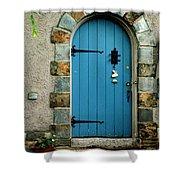 Blue Door In Baltimore Shower Curtain