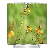 Blue Dragonfly In The Flower Garden Shower Curtain