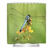 Blue Dragonfly On Yellow Flower Shower Curtain