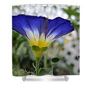 Blue Enchantment Side Shower Curtain