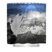 Blue Eyed And Moon Shower Curtain