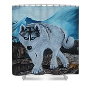 Blue Eyed Husky Shower Curtain