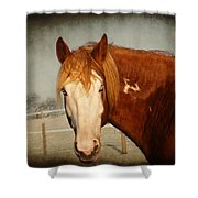 Blue Eyed Paint Shower Curtain