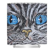 Blue Eyed Stripped Cat Shower Curtain