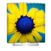 Blue Eyed Susan Shower Curtain