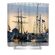 Blue Flags Shower Curtain