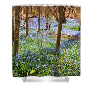 Blue Flowers In Spring Forest Shower Curtain