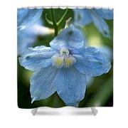 Blue Fragil Shower Curtain