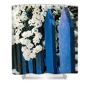 Blue Garden Fence With White Flowers Shower Curtain