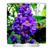 Blue Ginger Shower Curtain